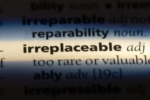 107171431 - irreplaceable word in a dictionary. irreplaceable concept.